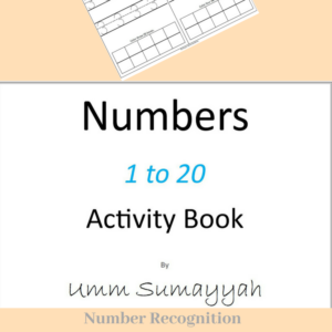 Numbers 1 to 20 Activity Book